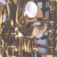 Flute Swab