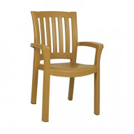 Sunshine Resin Dining Arm Chair Teak Brown