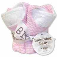 Bouquet 4 Pack Bib - Gingham Seersucker Pink
