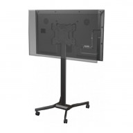 Mobile back-to-back display cart with height and tilt adjustment for 32